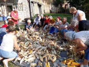 Kukoricafosztás: A Hagyományőrző és Nyugdíjas Klub programja